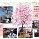 行事の様子を収めました。お花見ドライブは満開の桜で大満足。来年も行きましょうね!