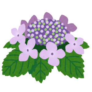 flower_gaku_ajisai